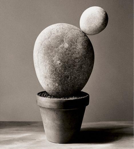 'La naturaleza de las cosas', de Chema Madoz